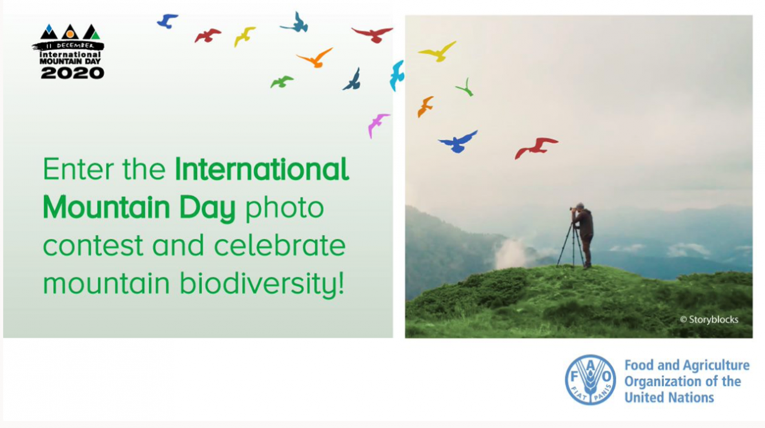 Photo contest dedicated to the International Mountain Day